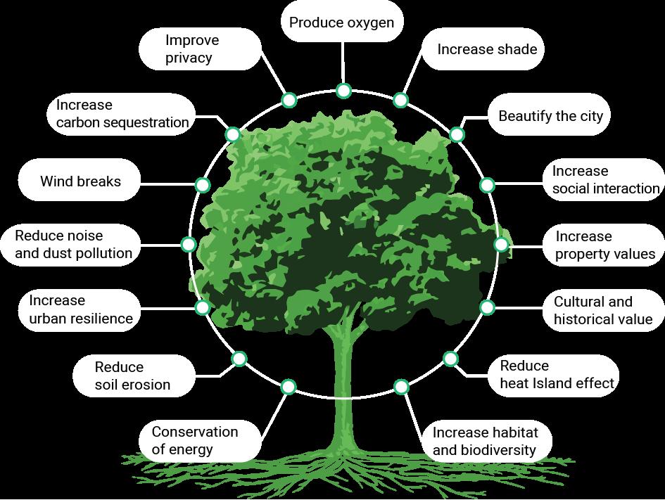Treetube Urban Green Infrastructure